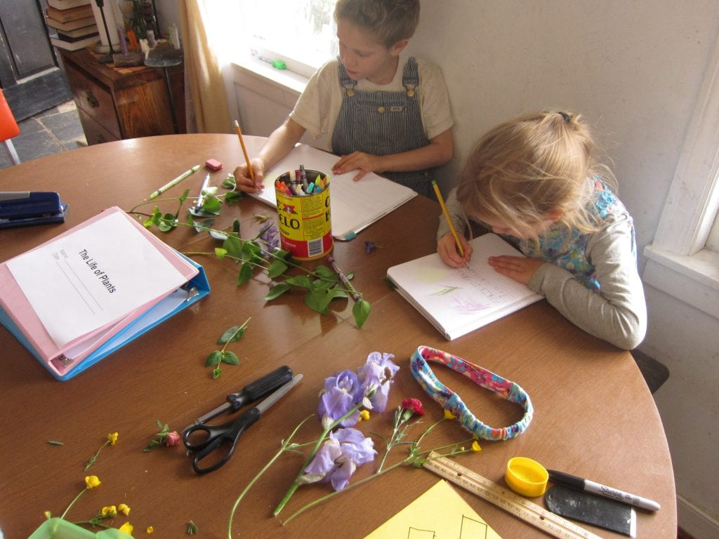 All three children keep a Nature Journal. The big two draw and write (I help with spelling) and Bull draws and dictates.