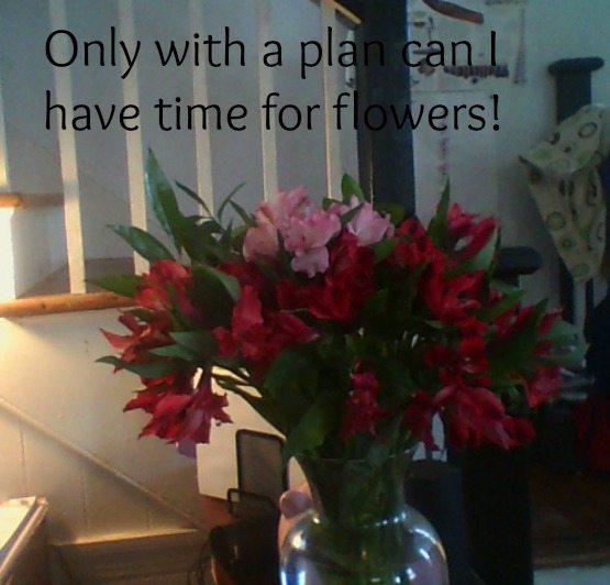 flowerspin