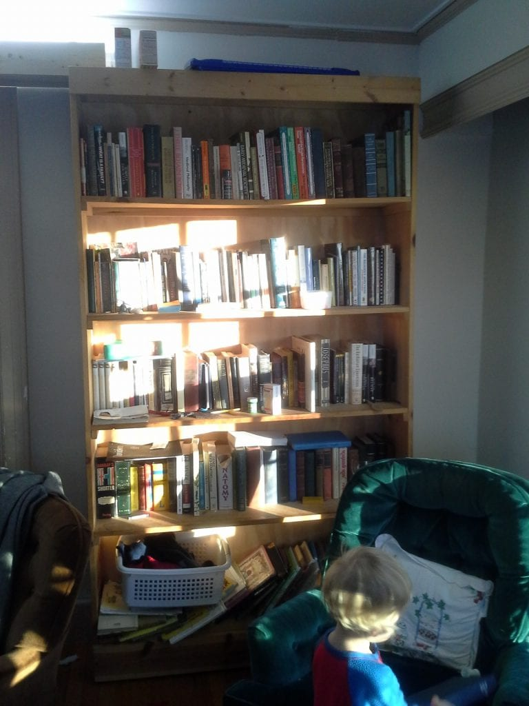 Mostly books and mostly for grown-ups. One shelf of picture books for the little boys (and the bin for socks waiting to be matched!)